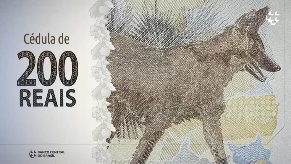 Nota de R$ 200  — Foto: Reprodução / Youtube