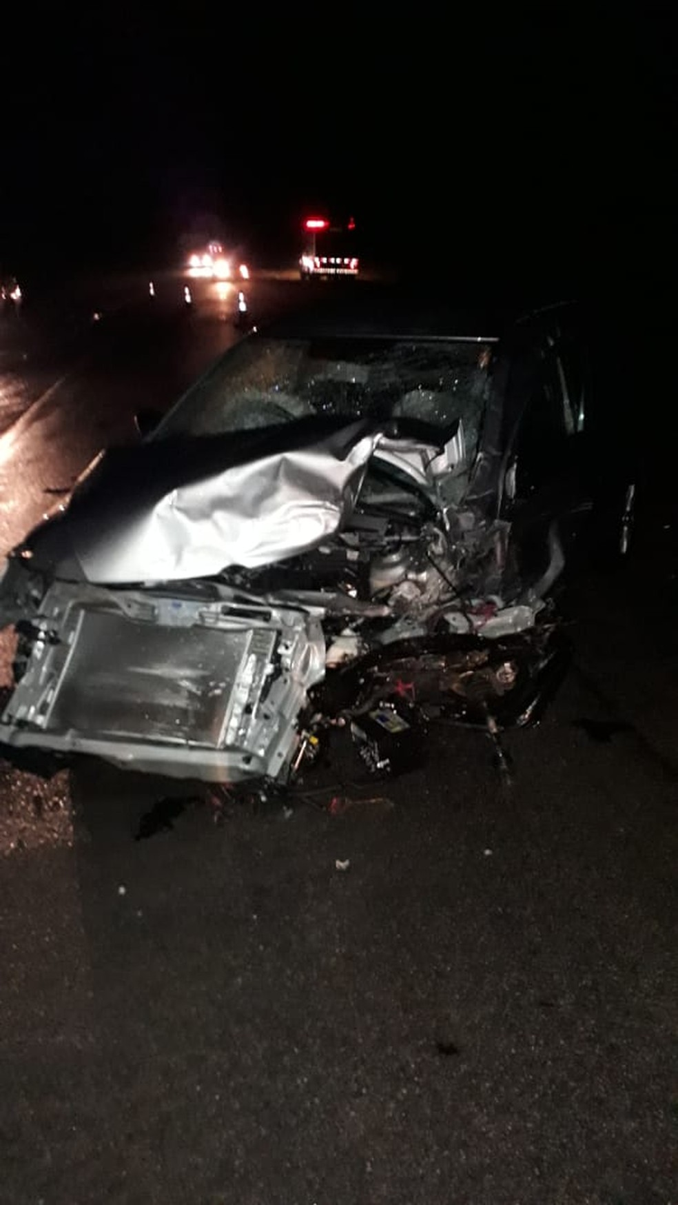 A polícia não soube informar as causas do acidente, que ainda serão investigadas (Foto: PRF/Divulgação)