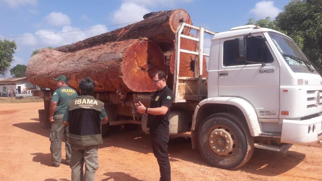 Caminhões, escavadeira e trator são apreendidos em ação de combate a crimes ambientais em Anapu - Notícias - Plantão Diário