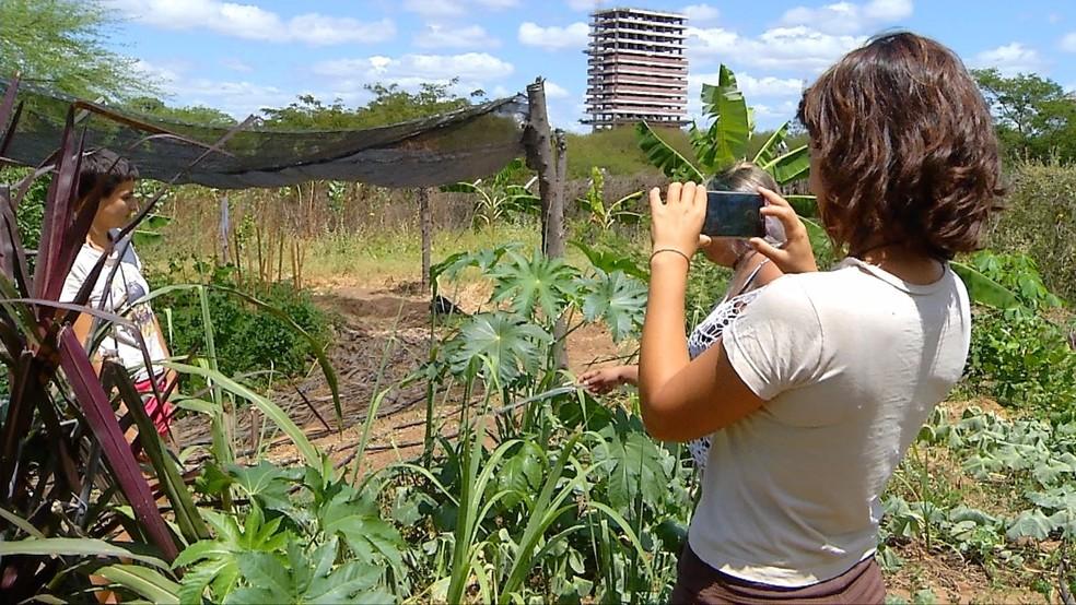 Jovens mineiras disponibilizam vídeos e técnicas da agroecologia na internet (Foto: Ivanúcia Lopes/ Inter TV Cabugi)
