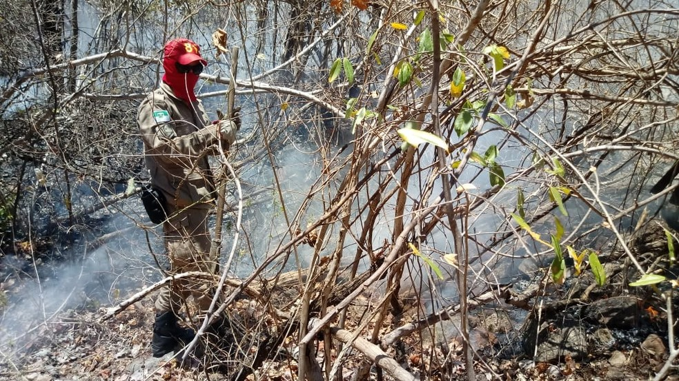 Incêndio florestal atinge mata na zona rural do município de Portalegre, no RN.  — Foto: Corpo de Bombeiros/Divulgação