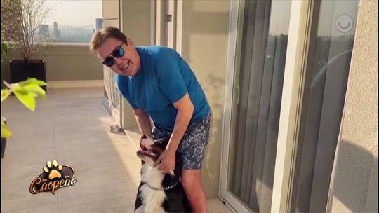 Faustão aparece brincando com seu cachorro na varanda: 'Meu companheiro de pandemia'