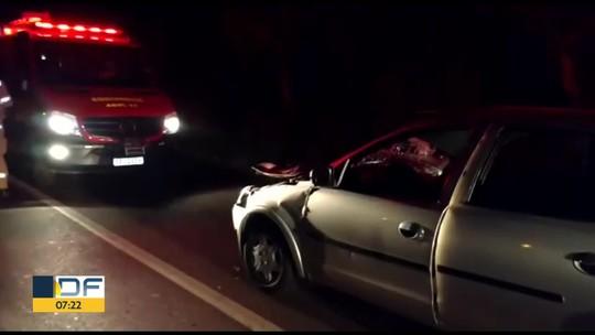 Atropelamentos matam 65 animais por semana nas rodovias do DF