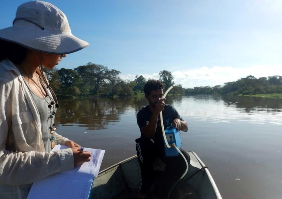 Pesquisadores atuaram nos principais rios do estado (Foto: Cecile Gama/Arquivo Pessoal)