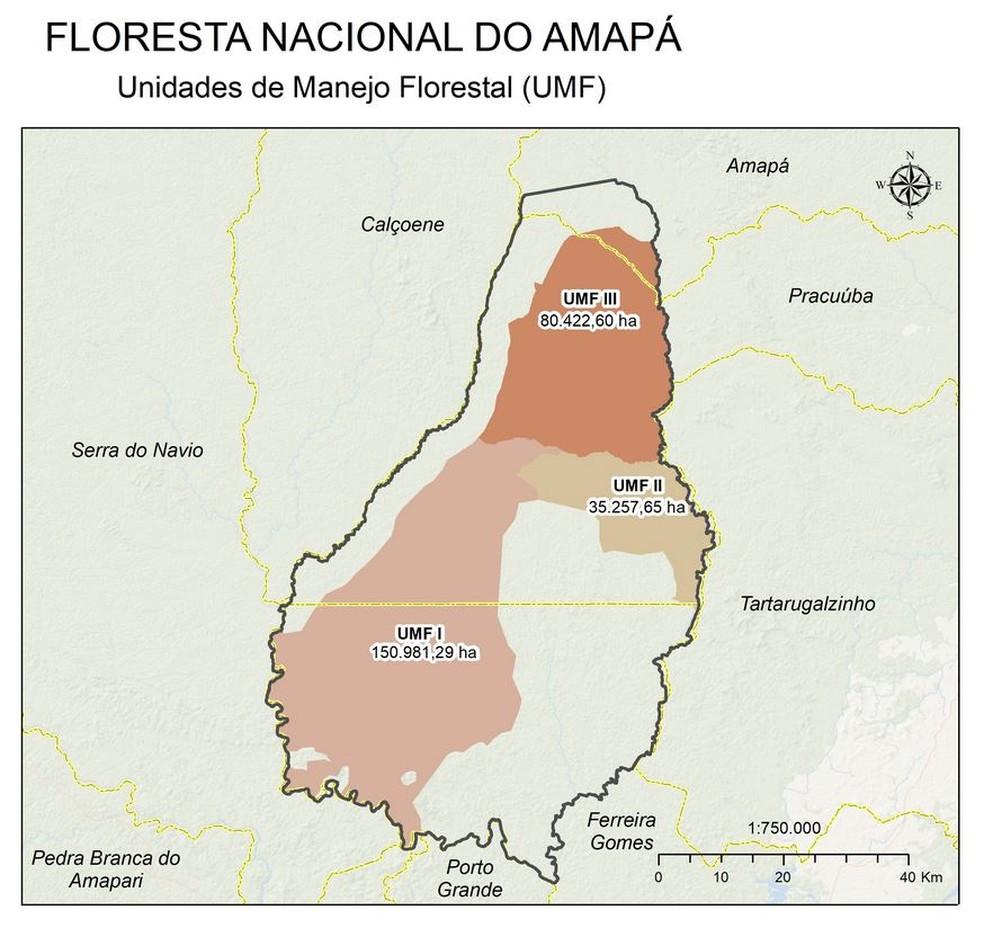 Território na Flona e áreas destinadas para concessão  — Foto: SFB/Reprodução