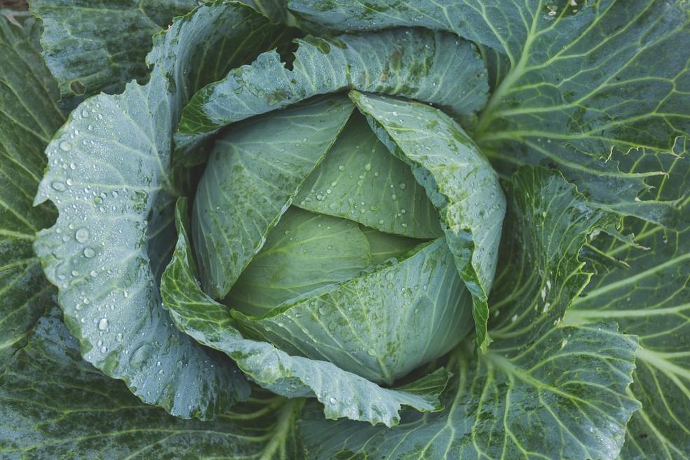 Sucos contendo legumes e verduras podem ter menos açúcar do que sucos de frutas, mas ainda assim não possuem fibras valiosas — Foto: Pixabay
