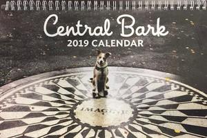 Tequila na capa do calendário do Central Park