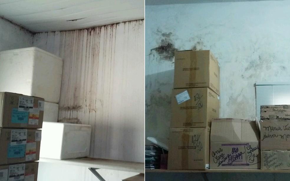 Goteiras, infiltração e mofo nas paredes da farmácia municipal de Miguelópolis, SP (Foto: TCE-SP/Divulgação)