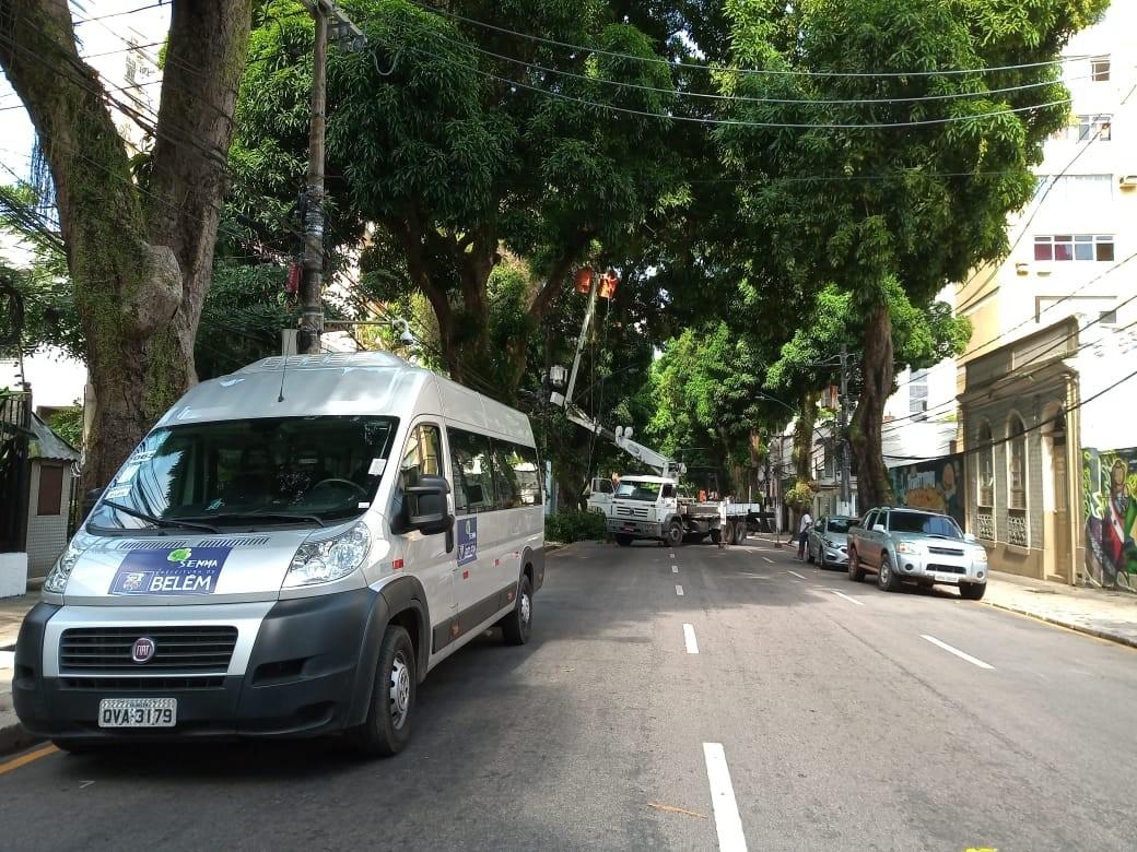 Serviço de poda de árvores interdita neste domingo trecho da av. Nazaré, em Belém