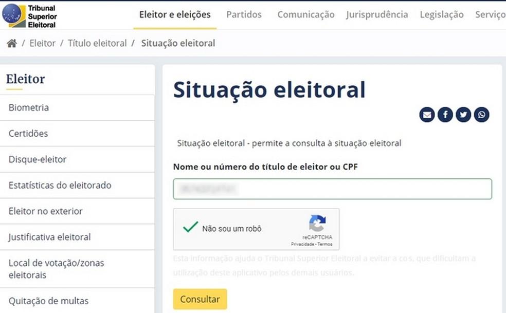 Site do TSE permite consultar situação eleitoral  — Foto: Reprodução/Raquel Freire