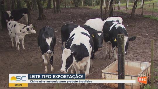 SC tem 2 estabelecimentos habilitados a exportar produtos lácteos para China