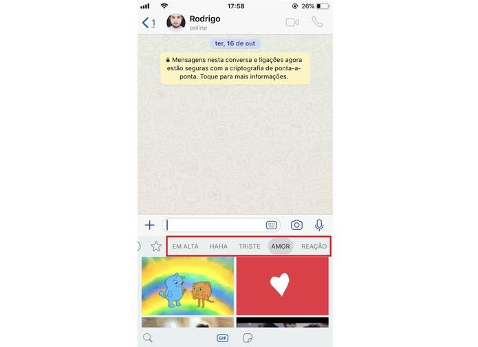WhatsApp permite pesquisar entre várias categorias de GIFs do catálogo Giphy  (Foto: Reprodução/Rodrigo Fernandes)