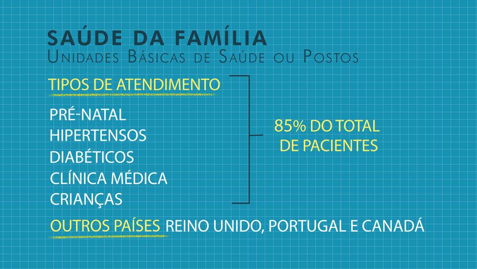 Tipos de atendimento feitos nos postos de saúde (Foto:  Aline Matos/Arte/TV Globo)