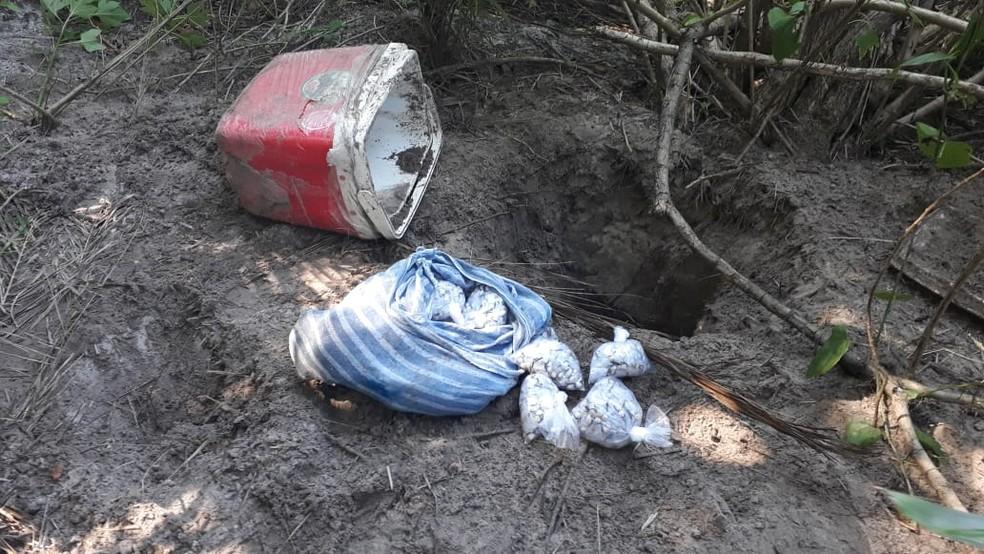 Na mesma ação, polícia achou quatro mil pedras de crack em um terreno próximo — Foto: SSP/ Divulgação