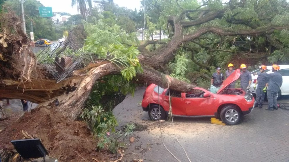 De acordo com o Inmet, ventos atingiram 78,5km/h por volta das 17h desta quarta, em Piracicaba (SP) — Foto: Edijan Del Santo/EPTV