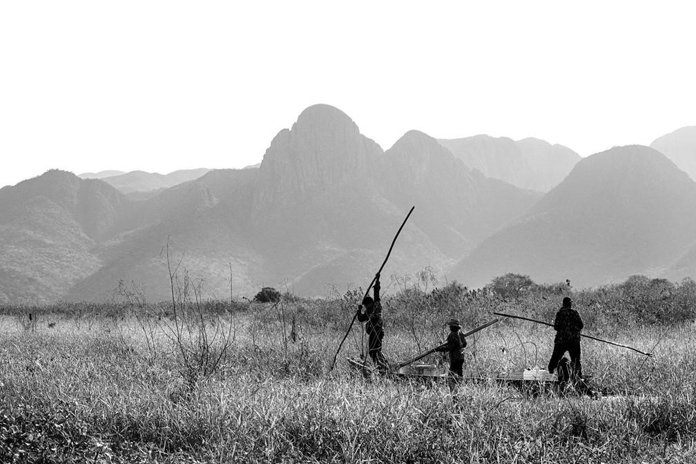 Catadores de isca conhecida como tuvira, que serve para a pesca do peixe pintado, no Pantanal em agosto de 2021 — Foto: Ricardo Martins