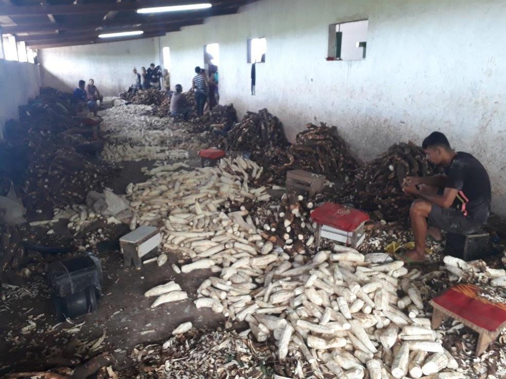 Trabalhadores de casas de farinha em Alagoas eram mantidos em condições degradantes e sem garantias trabalhistas (Foto: Ministério do Trabalho/Divulgação)