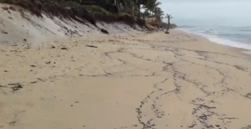 Novos fragmento de óleo foram registrados em praia do centro de Prado, no extremo sul da Bahia — Foto: Reprodução/TV Santa Cruz