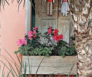As miniazaleias foram plantadas direto nas jardineiras de madeira de demolição (Foto: Evelyn Müller e Tatiana Villa/Casa e Jardim)