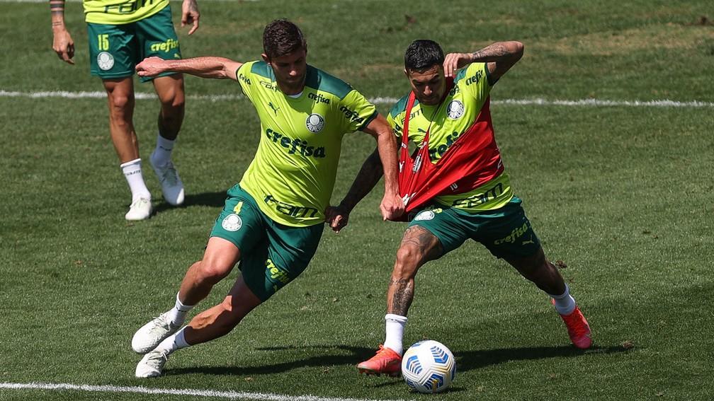 Kuscevic e Dudu, durante treino do Palmeiras — Foto: Cesar Greco / Ag. Palmeiras