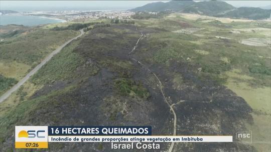 Incêndio destrói área de preservação no Sul do estado