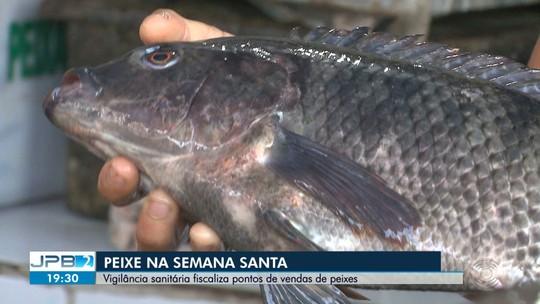 Vigilância sanitária fiscaliza pontos de vendas de peixes