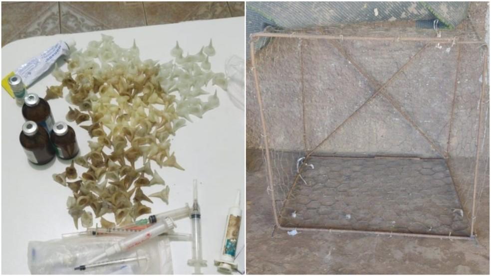 Material apreendido em local de rinha de galo em Grajaú, no Maranhão — Foto: Divulgação/Polícia Civil