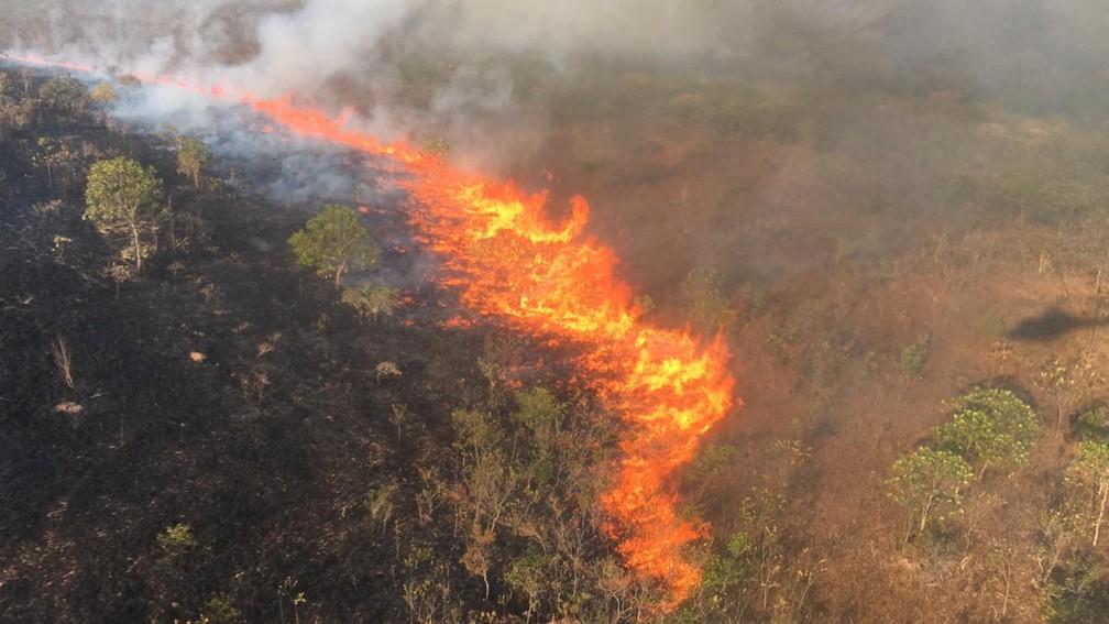Vento e tempo seco contribuem com a propagação das chamas — Foto: Ciopaer-MT/ Divulgação