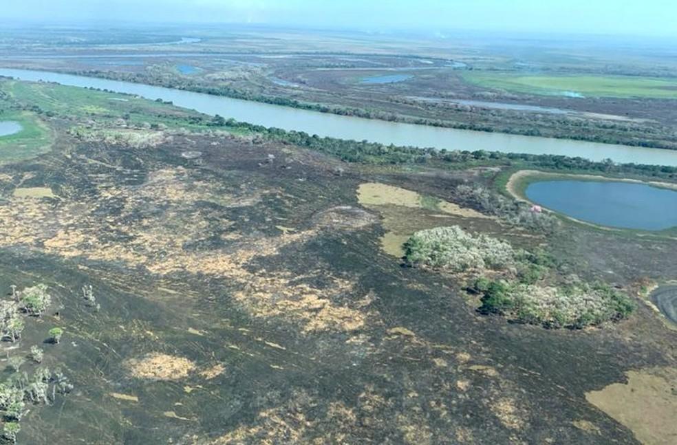 Fogo já destruiu extensa área de vegetação nativa na região da Serra do Amolar, em Mato Grosso do Sul — Foto: IHP/DIvulgação