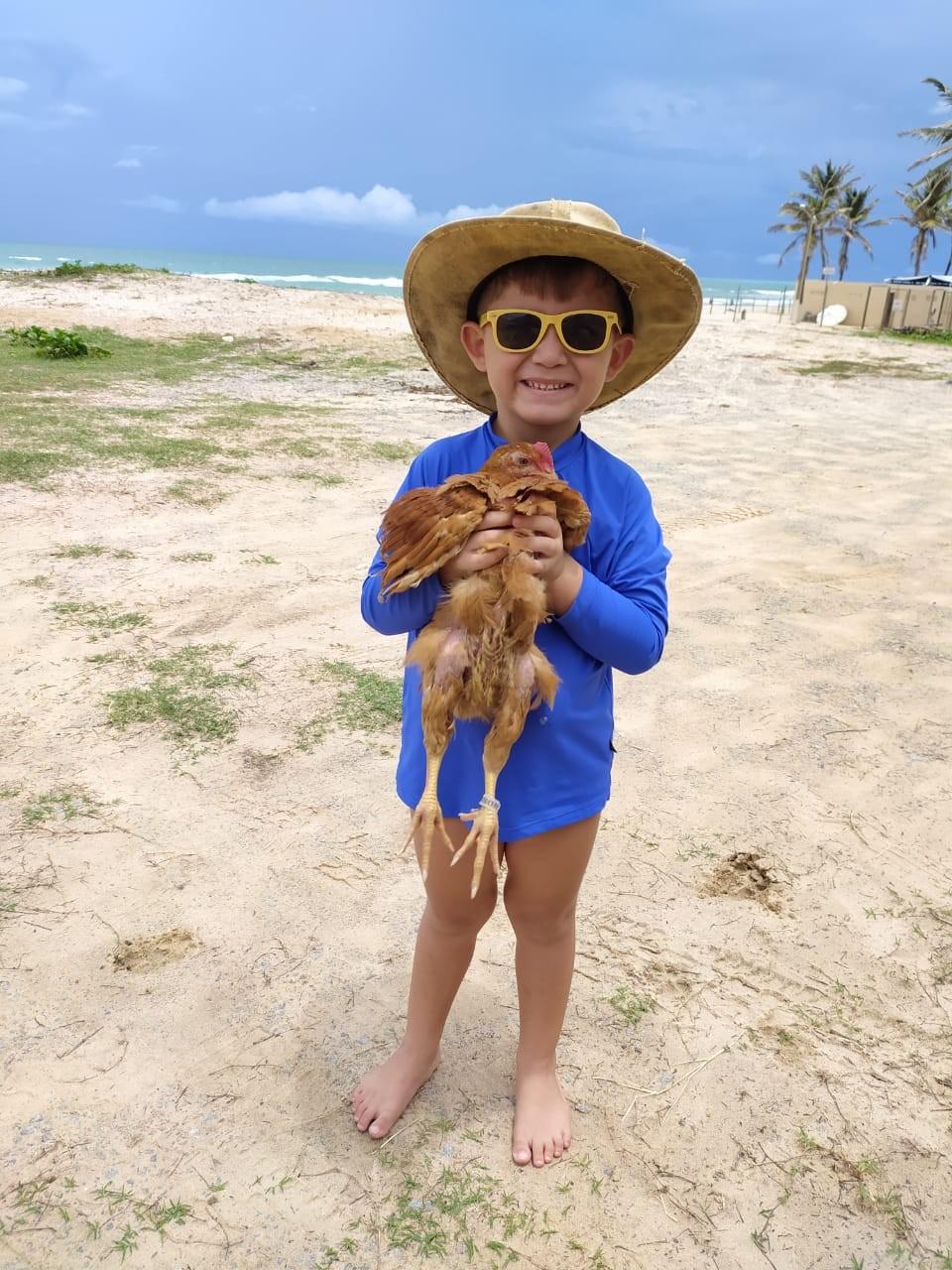 'Galo Edmundo' é adotado por criança de 5 anos e vira o melhor amigo do garoto em Fortaleza