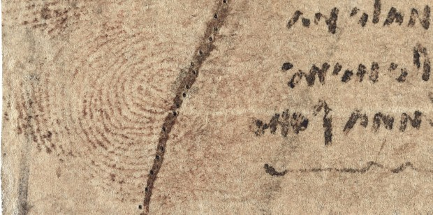 Pesquisa revela impressão digital em obra de Leonardo da Vinci (Foto: Reprodução)