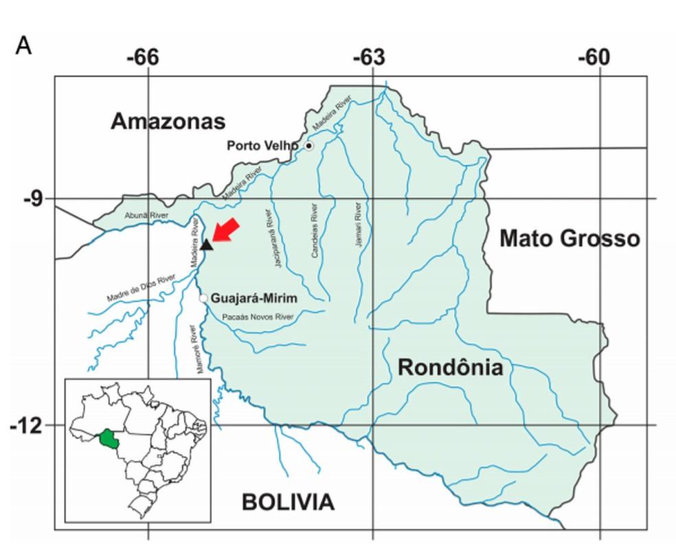 O mapa destaca o garimpo de Araras, em Nova Mamoré (RO), onde os fósseis de Trichechus hesperamazonicus foram encontrados. — Foto: Journal of Vertebrate Paleontology/Reprodução