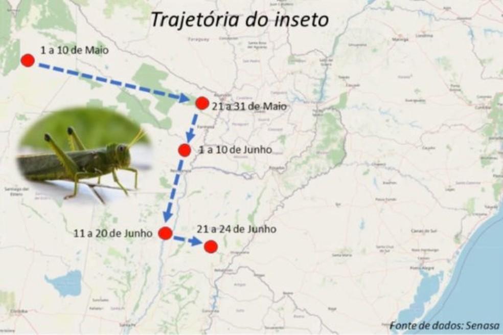 Trajetória dos gafanhotos, segundo especialista do Governo de SC — Foto: Kleber Trabaquini - Epagri/CIRAM