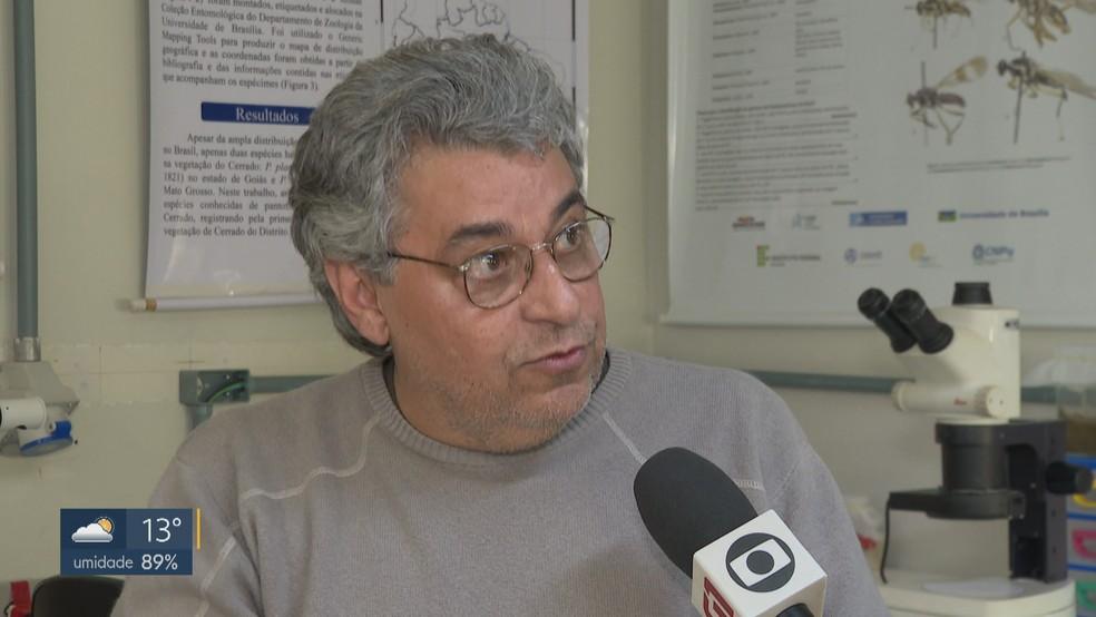 O professor e especialista em Zoologia da Universidade de Brasília (UnB) José Roberto Pujol  — Foto: TV Globo/Reprodução