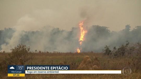 Fogo em reserva ambiental em Presidente Epitácio