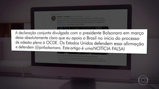 Donald Trump reafirma apoio à entrada do Brasil na OCDE