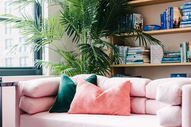 Higienização de sofá: como manter o móvel sempre limpo