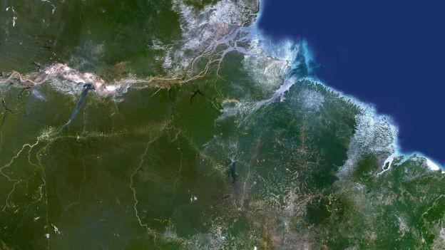 Brasil usa programa de satélite que rastreia a perda de árvores em grande escala, mas há sinais de que os proprietários de terras estão desmatando áreas menores para escapar da detecção, diz reportagem (Foto: SPL, via BBC News Brasil)