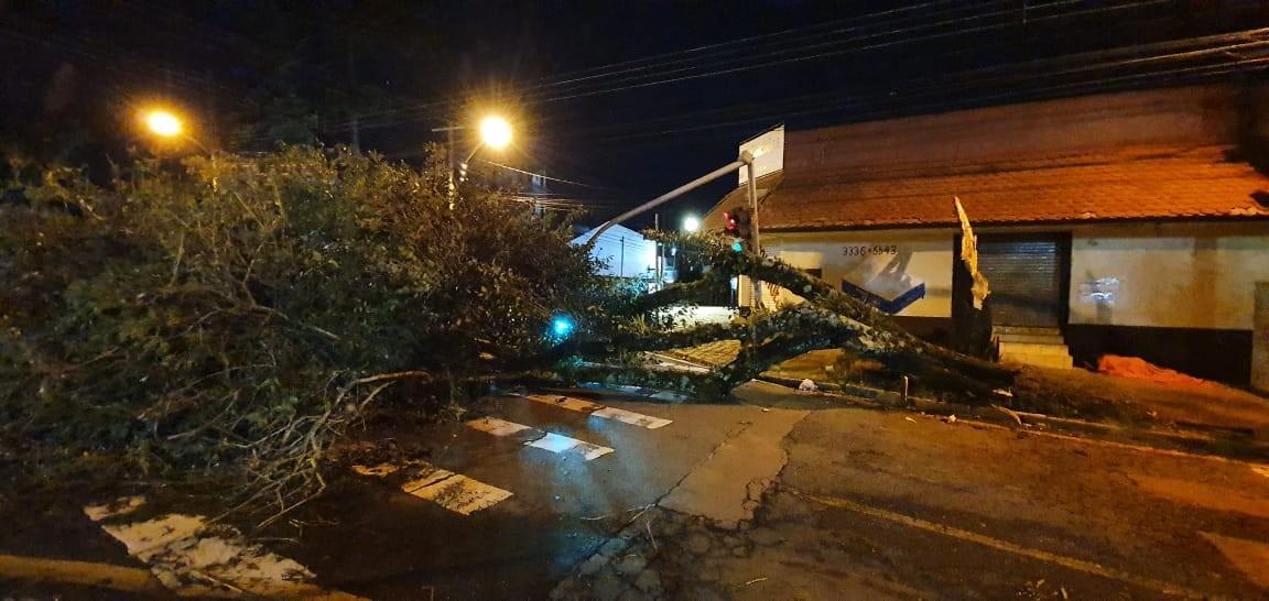 Ventania no Paraná causou prejuízos para 11.491 moradores em 54 cidades, diz Defesa Civil