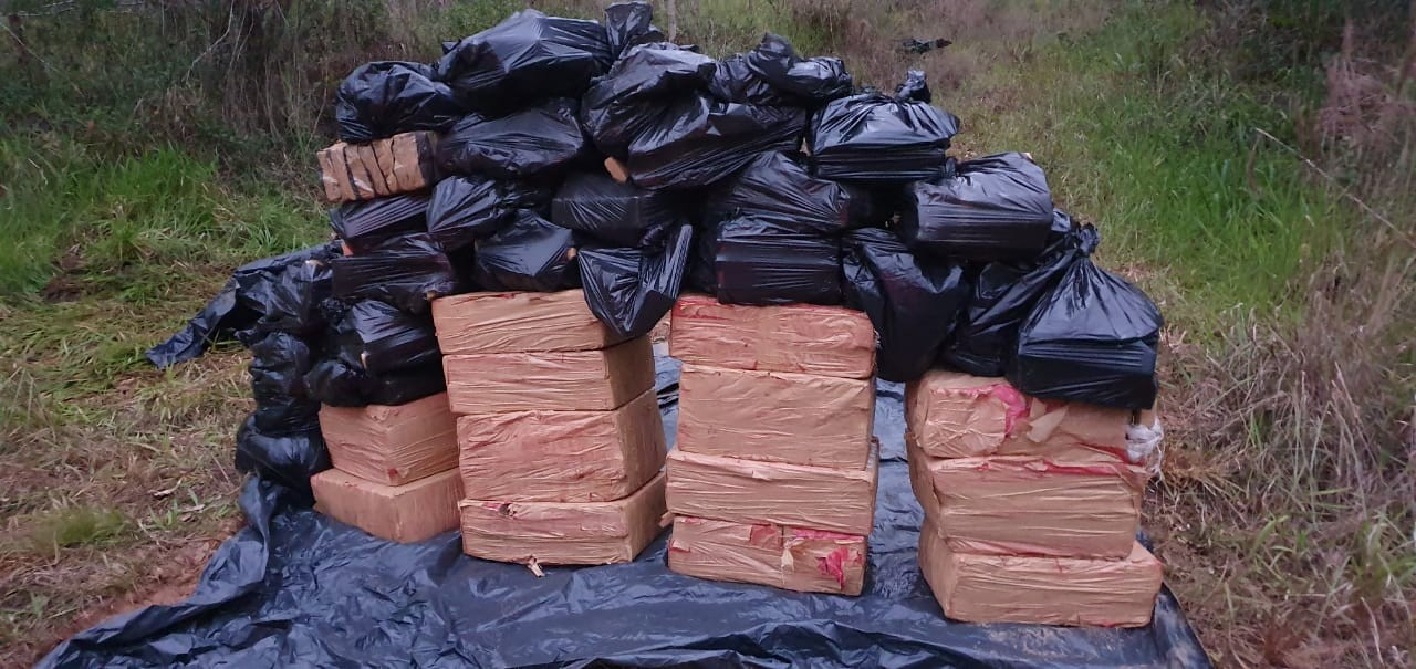Cerca de uma tonelada de maconha é encontrada em sacolas em matagal de Balneário Piçarras - Notícias - Plantão Diário