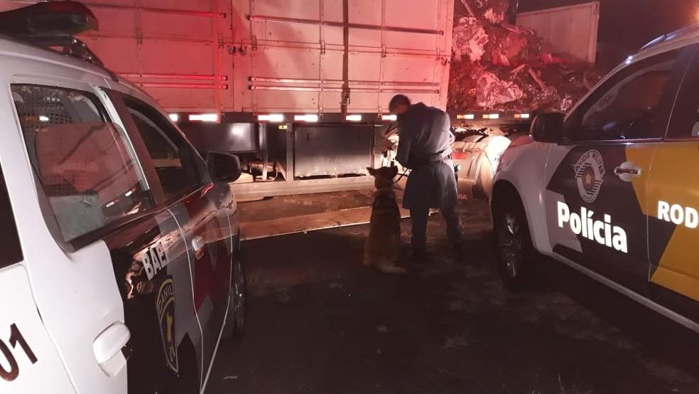 Abordagem do caminhão com placas de Ponta Porã (MS) foi feita na Rodovia Raposo Tavares em Assis — Foto: Polícia Rodoviária/Divulgação
