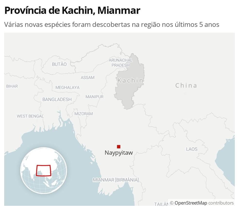 A província de Kachin, no norte de Mianmar, tem sido o local de descoberta de várias espécies nos últimos cinco anos — Foto: G1