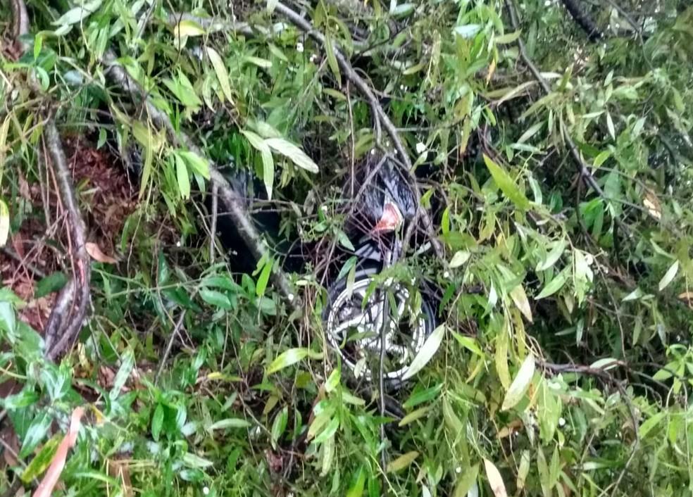 Ventania derruba árvore em cima de moto durante chuva forte em Taquarituba — Foto: Defesa Civil de Taquarituba/Divulgação