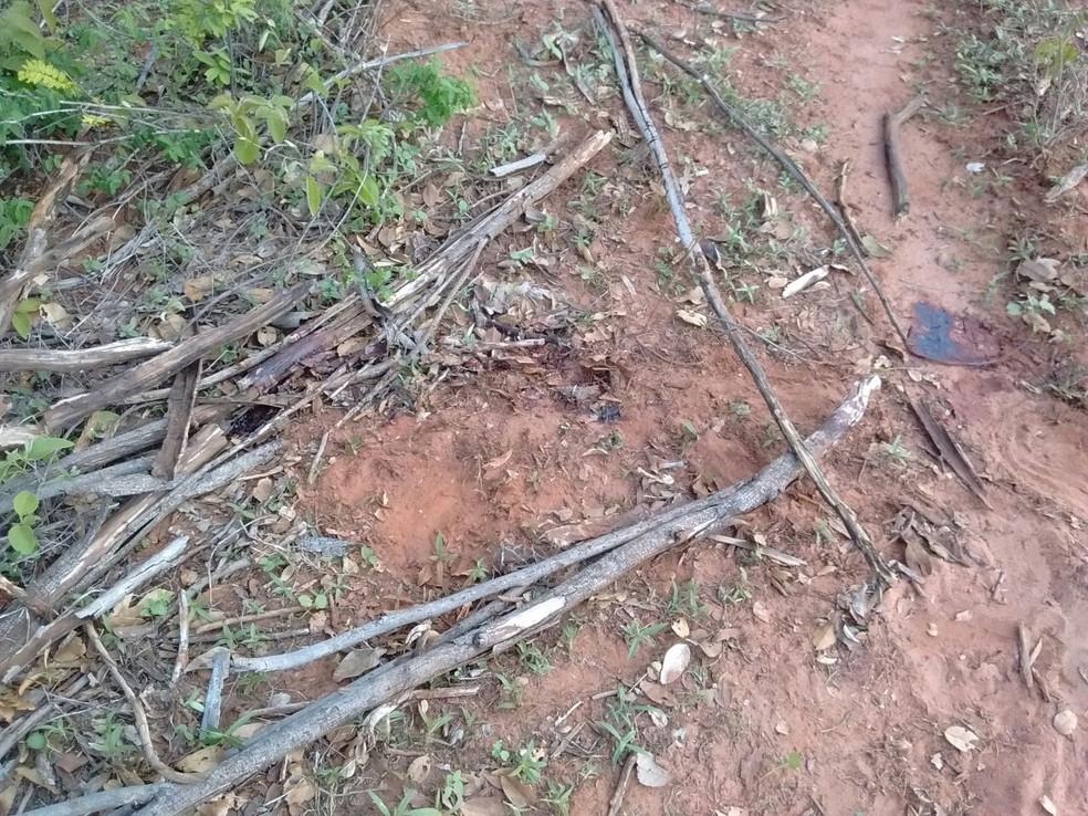 Mulher de 34 anos foi assassinada na frente da filha dela, de 10, na zona rural de Manga (Foto: Polícia Militar/Divulgação)