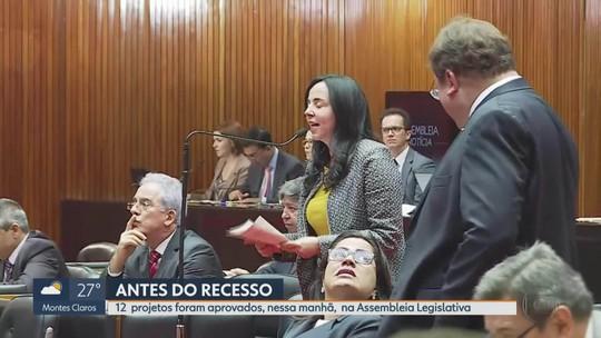 Deputados de Minas aprovam Plano Plurianual de Ação Governamental