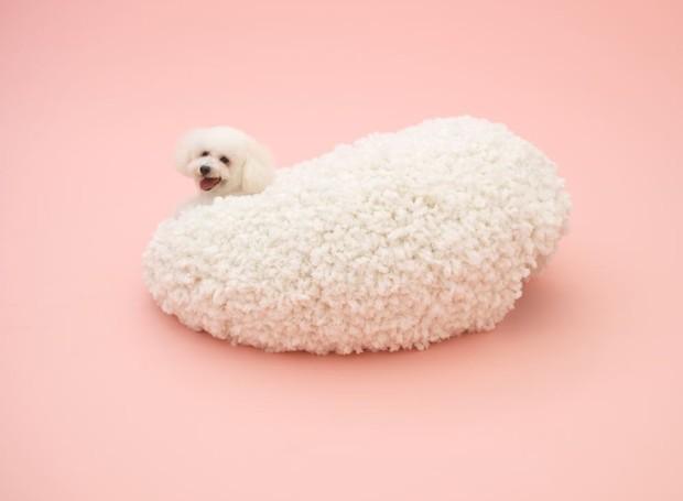 O projeto de Kazuyo Sejima foi pensado para um Bichon Frisé (Foto: Divulgação)