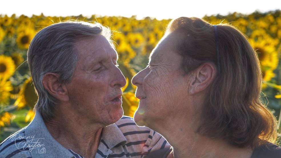 Idosos que se conheceram em lar tiram fotos na plantação de girassóis em Cerquilho — Foto: Ronny Clayton Fotografia/Divulgação