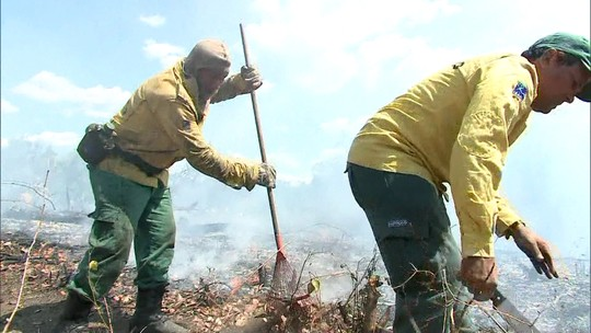Apuí, AM, teve 526 focos de queimadas nesta semana; G1 sobrevoou área em chamas
