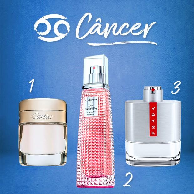 Câncer (Foto:  )
