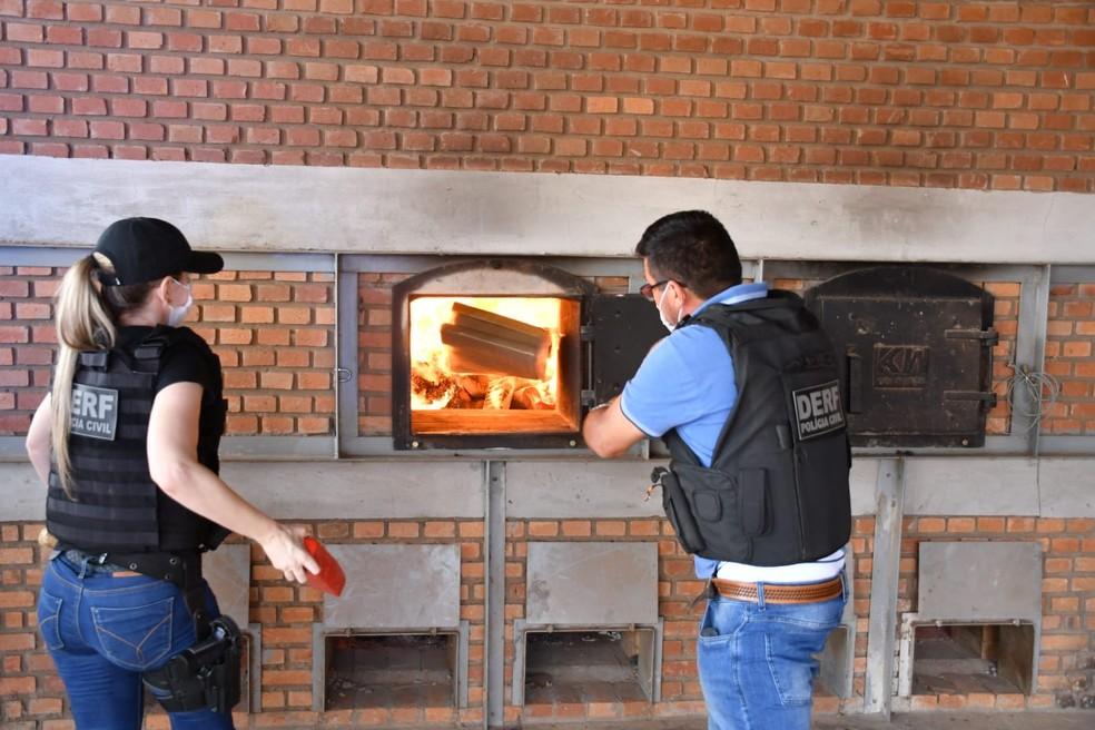 Droga apreendida foi incinerada pela polícia — Foto: Polícia Civil